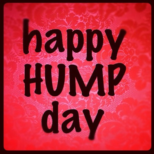 happy hump day! ;) #wednesday #doodlebuddy  (Taken with instagram)