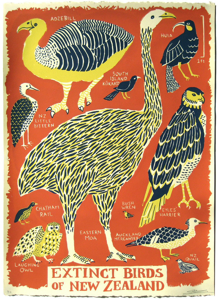 Extinct Birds of New Zealand 3 Layer Screenprint on 22x15 Stongehenge