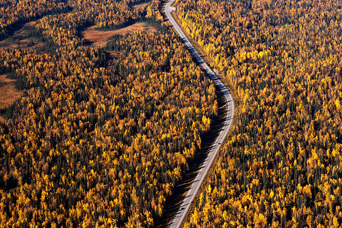 mocking-jaay:  Denali National Park, Alaska (by navid j)
