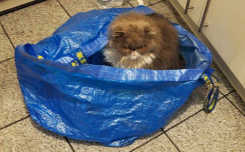 for a change: ikea bag