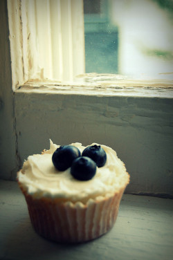 super-lovely:  lone cuppycake by peapod_dreams on Flickr.