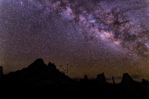 More Milky Way From the Big Bend by dfikar1 on Flickr.