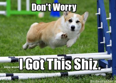 Confident Corgi Says…