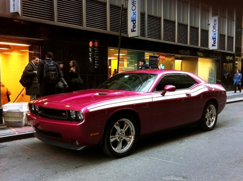 Not everything that happens in Vegas stays there… This Challenger R/T with Nevada plates was parked outside of my office in NYC the other day and I took the opportunity to shoot some quick iPhone photos. Why? This isn't just any old Challenger, it's a 2010 Dodge Challenger R/T Classic Furious Fuchsia Edition with the R/T stripes and special edition wheels.  There were only 1,000 of these produced in the U.S. and those are small numbers for any mass manufactured car these days. If it were an SRT model, it would be 1 of 287 in the U.S. God damn this car is stunning in person. What makes it an even more desirable car is the fact that this color (along with Plum Crazy, Detonator Yellow, & B5 Blue) has been discontinued.