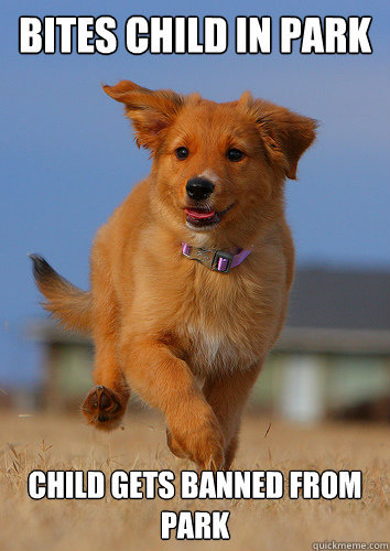 pleatedjeans:  Ridiculously Photogenic Puppy