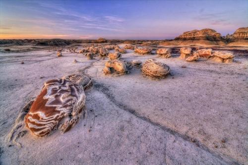 "The 41,170-acre Bisti/De-Na-Zin Wilderness is a remote desolate area of steeply eroded badlands which offers some of the most unusual scenery found in the Four Corners region. Time and natural elements have etched a fantasy world of strange rock formations and fossils. It is an ever-changing environment that offers the visitor a remote wilderness experience. Translated from the Navajo language, Bisti means ""a large area of shale hills"" and is commonly pronounced (Bis-tie). De-Na-Zin (Deh-nah-zin) takes its name from the Navajo words for ""cranes."" Petroglyphs of cranes have been found south of the wilderness area.Photo: Raghuveer Makala - Bureau of Land Management"