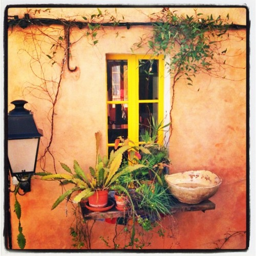 Provence (Taken with instagram)