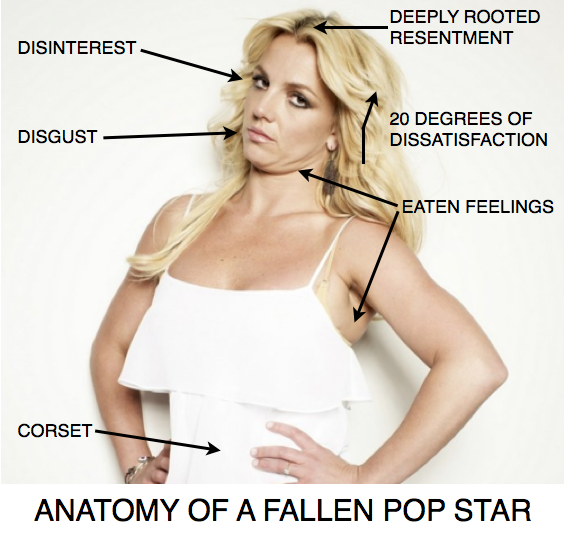 Anatomy of a fallen pop star.