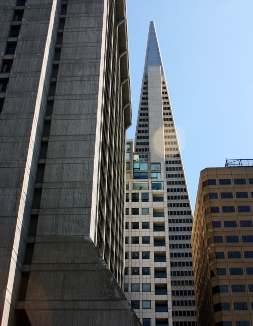SAN FRANCISCO TRANSAMERICA BUILDING 2012 DSLR Photography Shot taken during my vacation in da Bay Area.