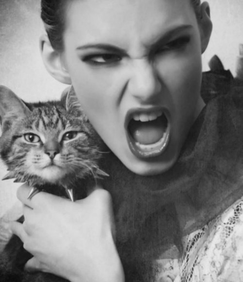 cutecatpictures:  Celebrity with cat