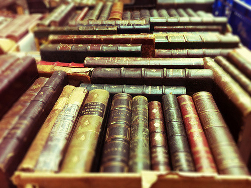 The smell of books. The veins of old paper.