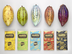 visualgraphic:  Marou Chocolate