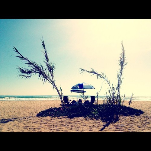 Beach life (Taken with instagram)