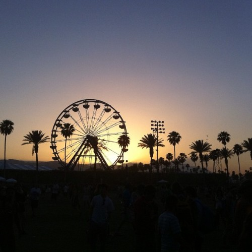 Wanted to go to Coachella. Hope next year