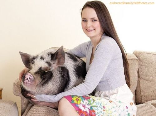 mudwerks:  (via Miss Piggy « AwkwardFamilyPhotos.com 04/11/2012)