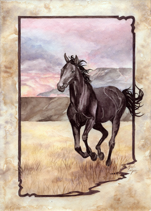 (via somethin western by ~Kayla-Noel on deviantART)