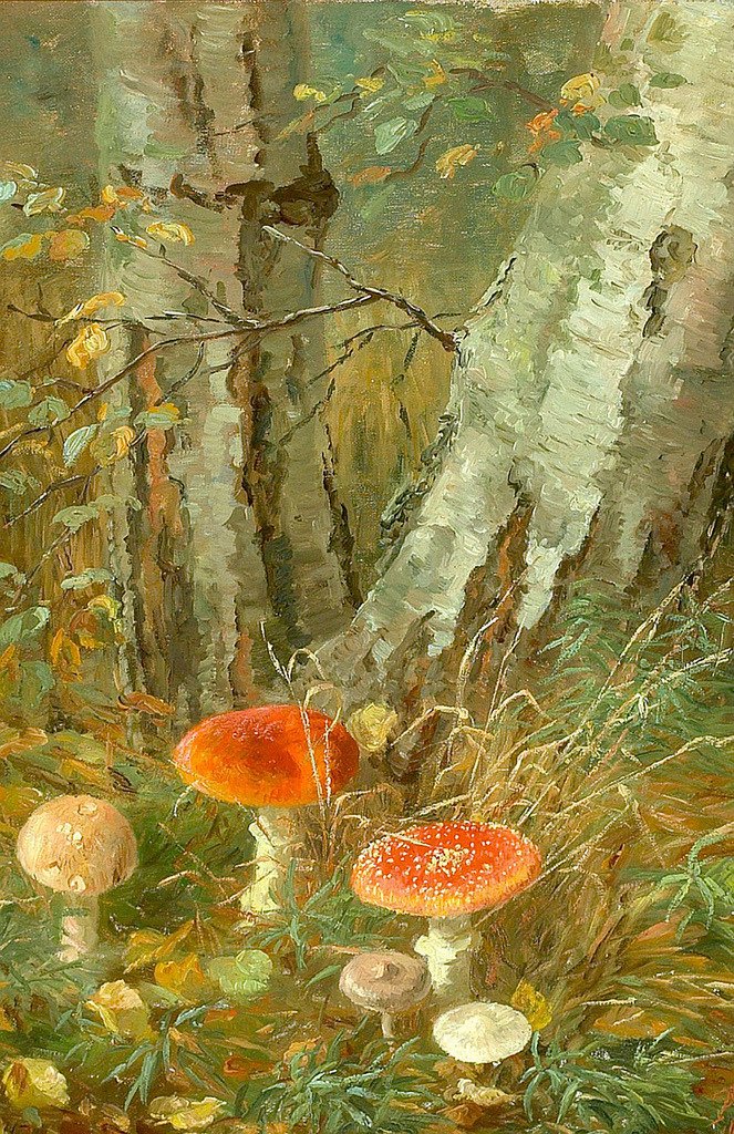 "paperimages:  Anthonore Christensen (Danish, 1849-1926), ""Forest floor with mushrooms"""