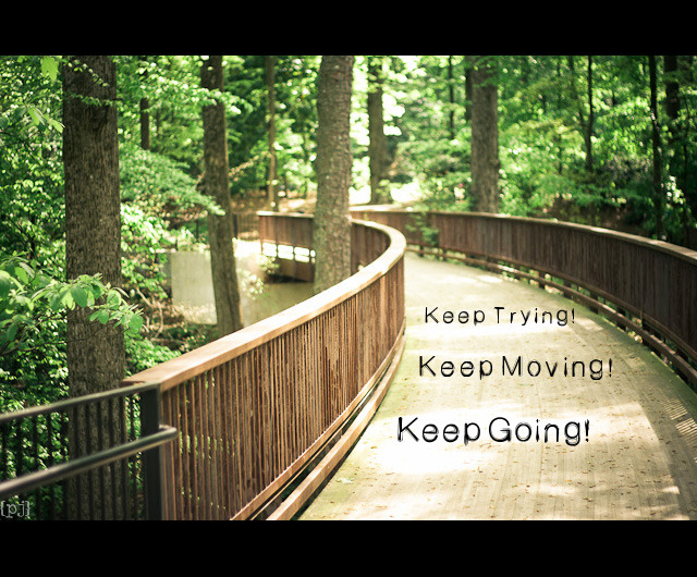 Project 52: 10/52 Keep Going! Keep Moving! Keep Trying!  Quote source: www.modishblog.com