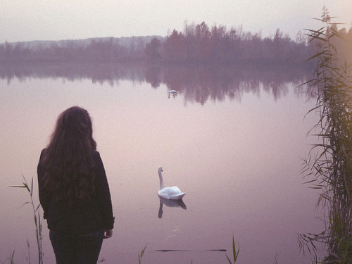untitled by bird ghosts on Flickr.