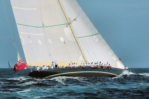 Les voiles de Saint Tropez 2009 by lumer-photo-passion-83 on Flickr.