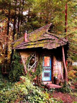 bluepueblo:  Fairy Tale House, Blue Ridge Mountains, Georgia photo via orange