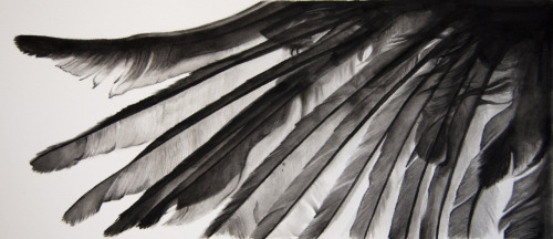 kenzigoss:  Ink wash inspired by Castiel's wings is now up for sale on Red Bubble AND Society6 10% from Red Bubble and $5 from Society6 will come to me, which will go directly to Random Acts. Thank you for all your support and I appreciate any promotion. Spread the word and we can make a huge donation!
