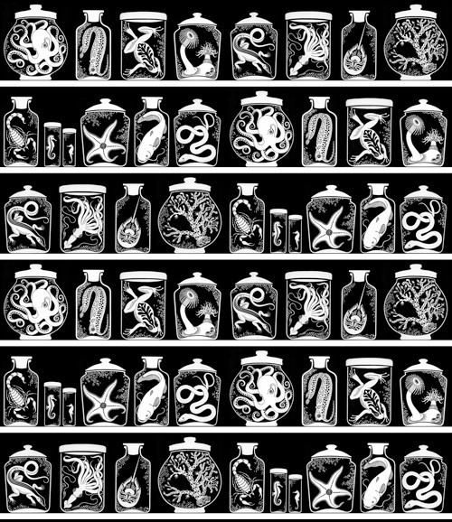 "carnetimaginaire:  Specimen Jars print (artist uncredited, I believe it's ""Sakura Snow""'s work)"