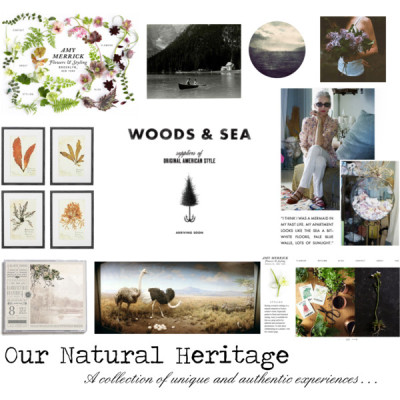 Our Natural Heritage Website Inspiration by sealicious on polyvore.comGoodmorning & Goodnight - A refreshing dose of interestingTumblrTumblrPicture Show: Museology Revisited - - GOODYou paid more than me: Why by that? THIS is free!TumblrTumblrTumblrTumblrTumblr