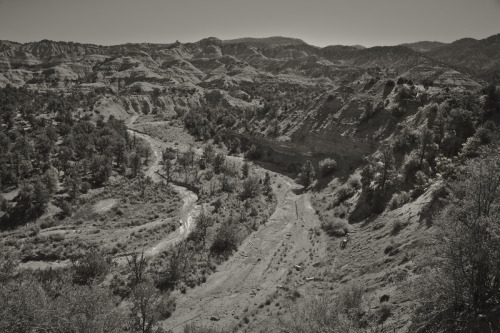 ROAD TRIP image no. 389 Canyons of the Escalante, Utah July 1st, 2011 Mark Peter Drolet + click through to see larger
