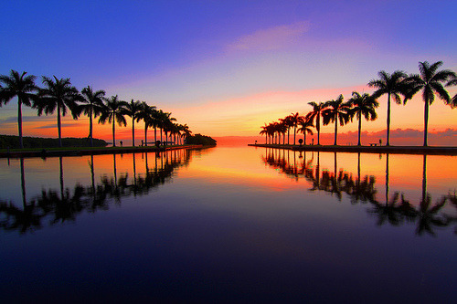 lori-rocks:  Miami Sunrise (by Kyutpie)