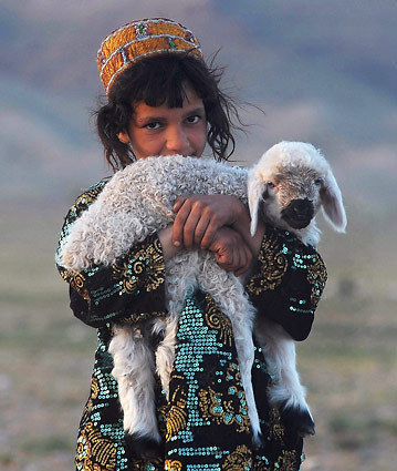 An Afghan girl holds her sheep on the outskirts of Herat on April 10, 2012. [Credit : Aref Karimi/AFP/Getty Images]