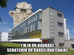 I'm in ur Bauhauz, scratchin ur Barcelona chair