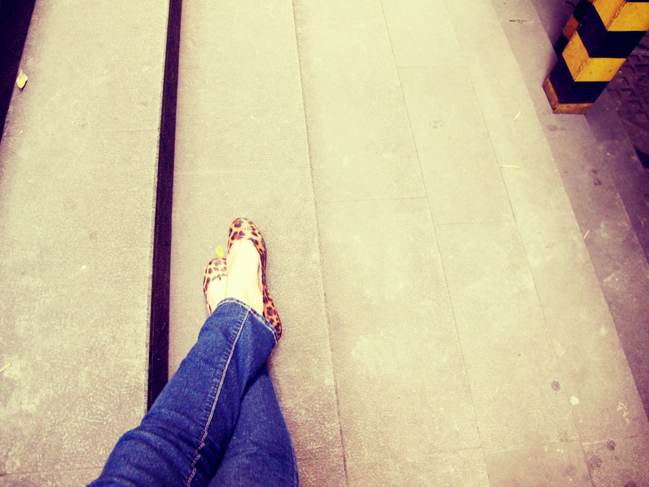 103/366 practically living in my animal print flats lately. Sole Divas, thank you for making amazingly comfy flats (no, they did not ask me to say that)