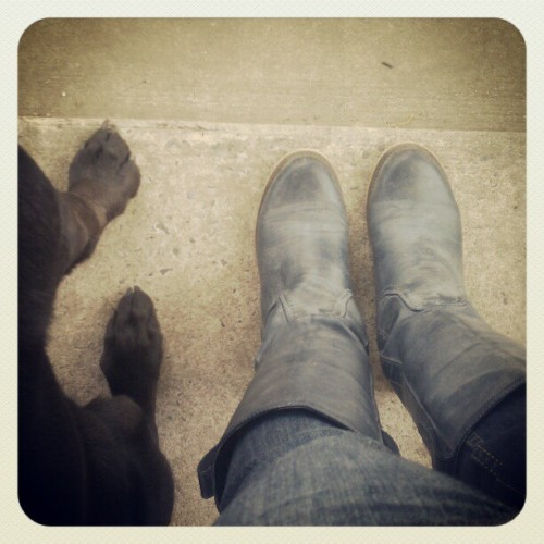 #fromwhereistand  (Taken with instagram)
