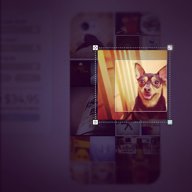 We just made an awesome update to Casetagram today. Based on your feedback, we have added the image-cropping feature.  Here's how-1. Double-click on an image to see the four control points.2. Drag control points to resize or select the part of the image you want to keep.3. Hit OK to crop the image. That's it! Have fun guys! Can't wait to see your designs!