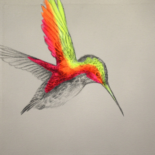 "fuckyeahpsychedelics:  ""A Little Bit Wild"" by Louise McNaught"