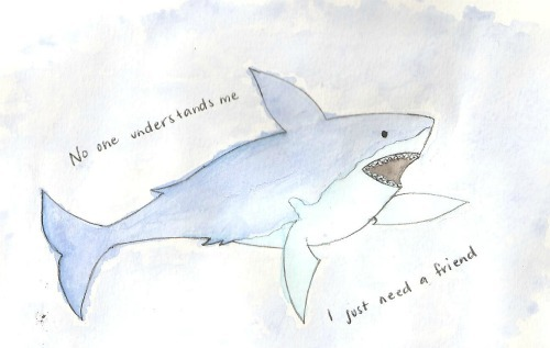 if-iwereinyour-shoes:  Aw, poor Sharky.