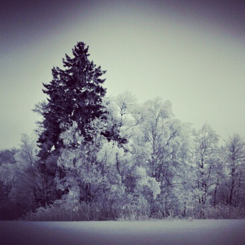 #sweden #stockholm #snow  (Taken with instagram)