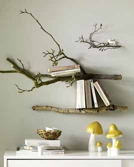 chezmoidanielle:  Branches as shelving