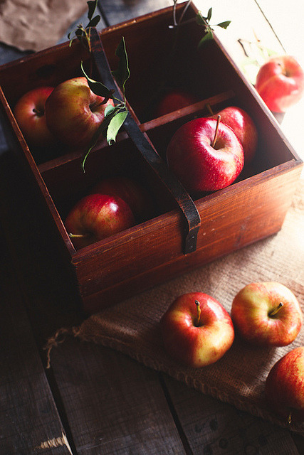 mariwo013:  apples by hannah * honey & jam on Flickr.