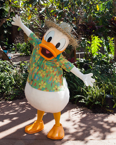 Aloha Donald (by Peter E. Lee)