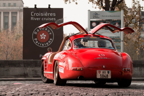 carmonday:  gullwings Mercedes 300SL