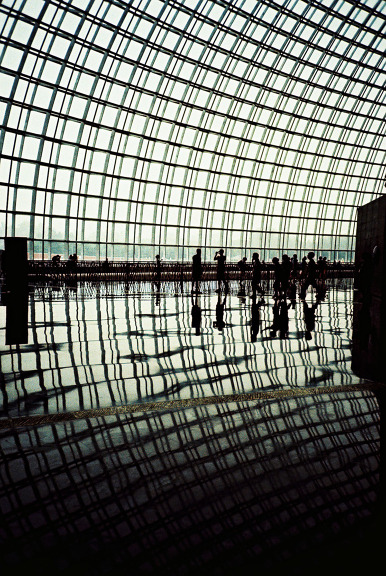 Lomography Tag of the Day - reflections