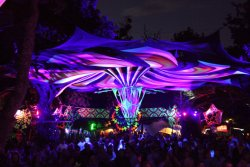 Psychedelic trance gatherings are wonderlands. I sometimes look back and can't believe that i had the opportunity to go. Easter Vortex 2012 Cape town, South Africa. Photo: Niel Moller
