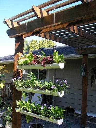 Edible Gardening in Small Spaces | Pallet Gardens | The Small Garden