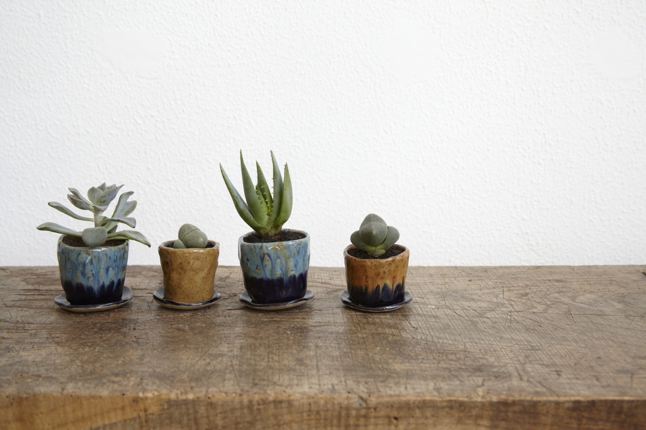 Tiny Planters now available to pre-order. Get yourself a little fella here