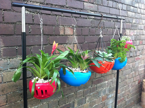gardensinunexpectedplaces:  Old bike helmets = new planters (via Ask Umbra: What should I do with my old bike helmet? | Grist. Photo source here.)