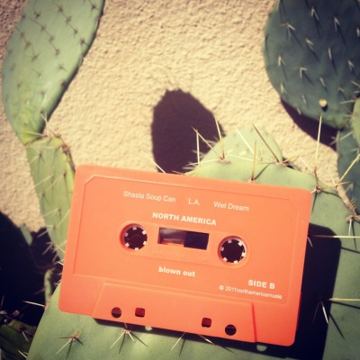Click on the Cactus Cassette to purchase through our friends @  INSOUND!