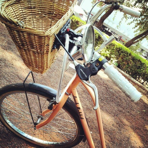 I love my bike  (Tomada con instagram)
