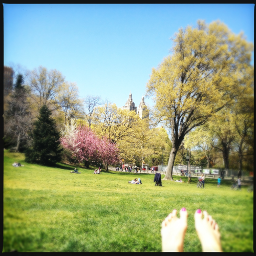 TGIF: starting the weekend with some sun+park time. Enjoy!